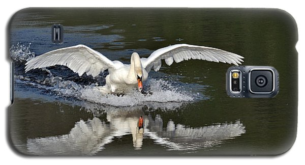 Galaxy S5 Case featuring the photograph Swan Landing by Simona Ghidini