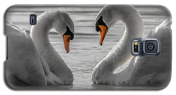 Galaxy S5 Case featuring the photograph Swan Love 2 by Brian Stevens