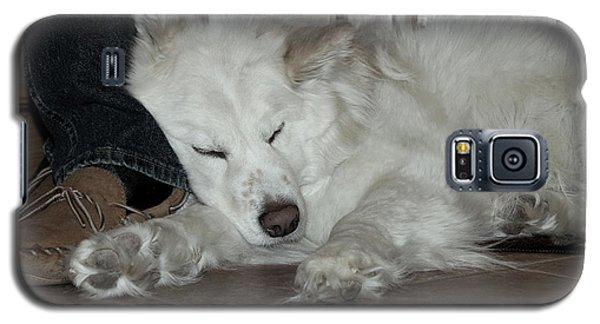 Sweet Dreams Galaxy S5 Case by Fiona Kennard