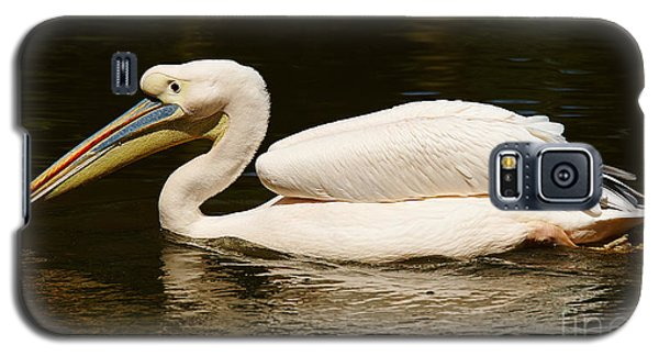 Galaxy S5 Case featuring the photograph Swimming Pink Pelican by Nick  Biemans