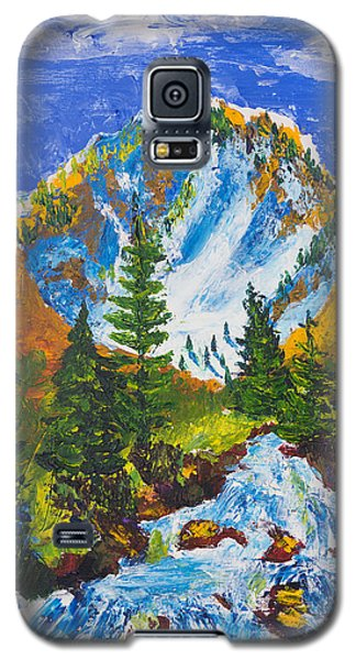 Taylor Canyon Run-off Galaxy S5 Case