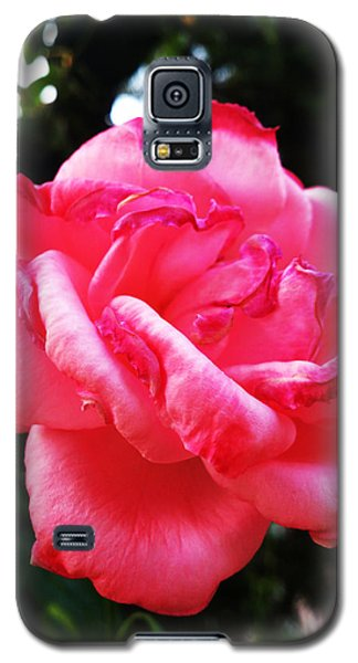 Tenderness Galaxy S5 Case by Lucy D