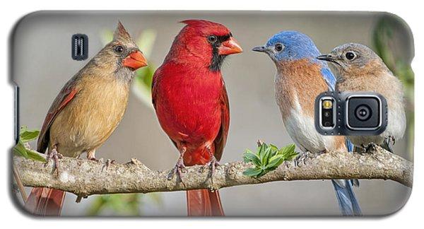 The Bluebirds Meet The Redbirds Galaxy S5 Case