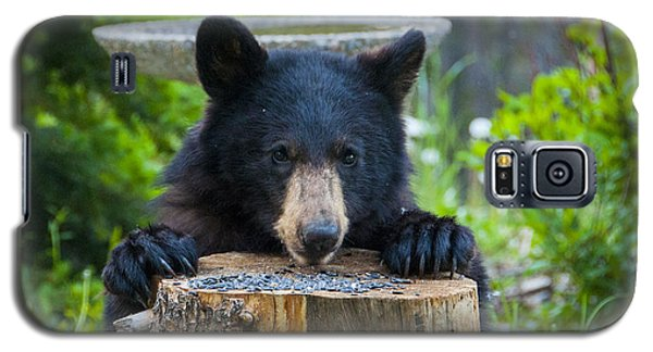 The Cub That Came For Lunch 7 Galaxy S5 Case