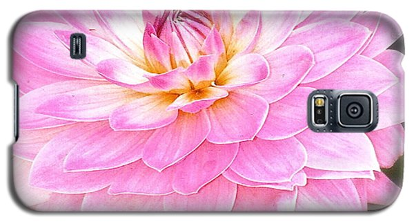 The Vivid Pink Dahlia Galaxy S5 Case by Margie Amberge
