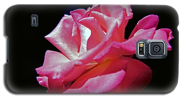 The Last Rose Of Summer Galaxy S5 Case by Andy Lawless