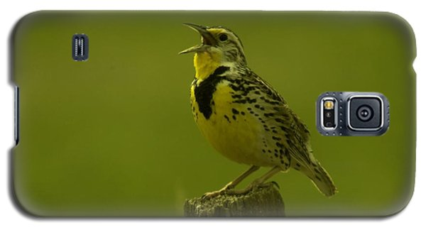 The Meadowlark Sings Galaxy S5 Case