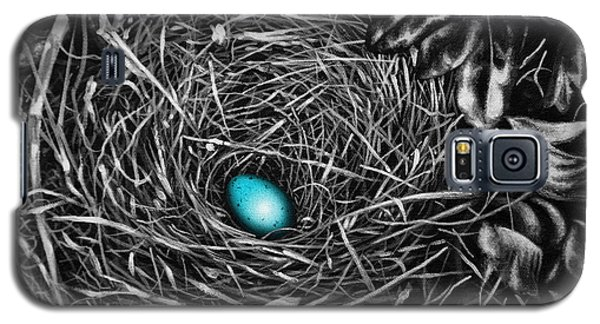 The Robin's Egg Galaxy S5 Case