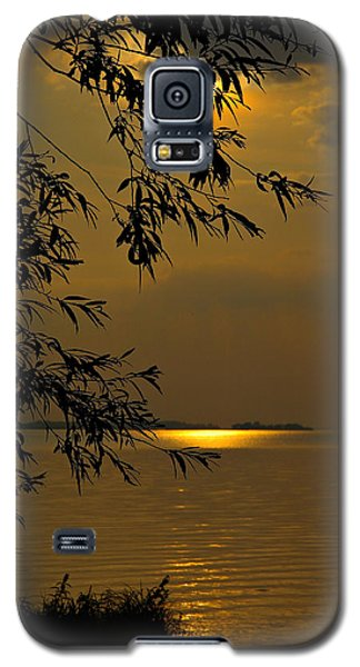 The Shining Light Galaxy S5 Case by Judy  Johnson