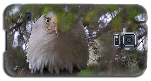Galaxy S5 Case featuring the photograph The Watcher by Cynthia Lagoudakis