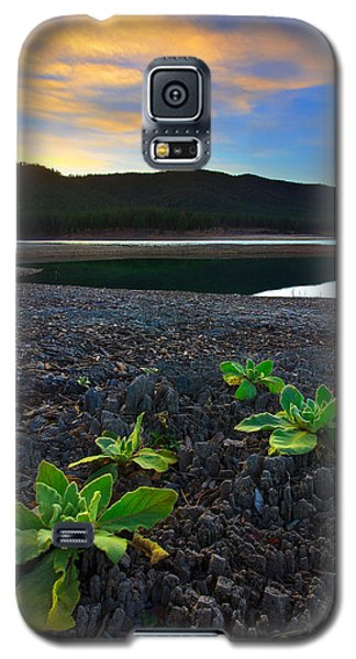 Galaxy S5 Case featuring the photograph The Way Of Life by Kadek Susanto