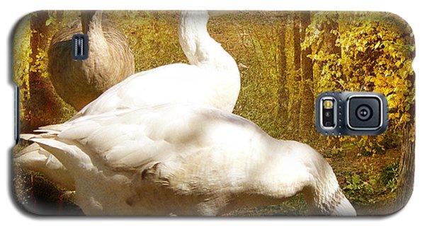 Three Geese A Grazing Galaxy S5 Case