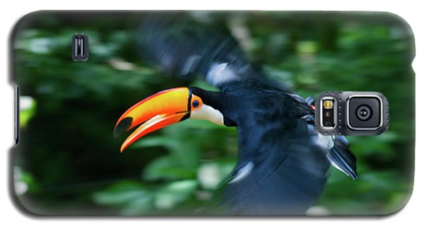 Toco Toucan (ramphastos Toco Galaxy S5 Case