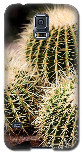 Galaxy S5 Case featuring the photograph Triple Cactus by John Wadleigh