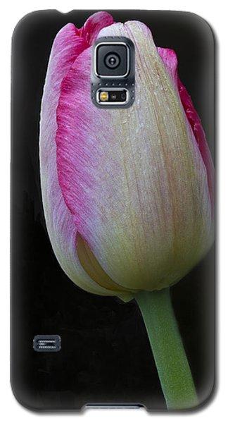 Tulip Bright Galaxy S5 Case