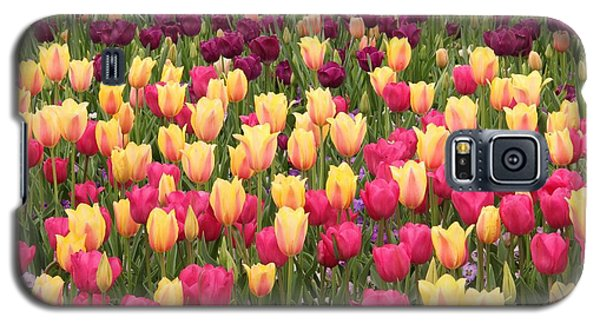 Galaxy S5 Case featuring the photograph Tulips by Elizabeth Budd