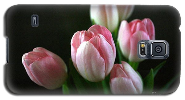 Tulips On Display Galaxy S5 Case by Cathy Dee Janes