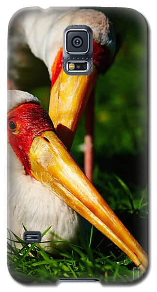 Galaxy S5 Case featuring the photograph Two Painted Storks by Nick  Biemans