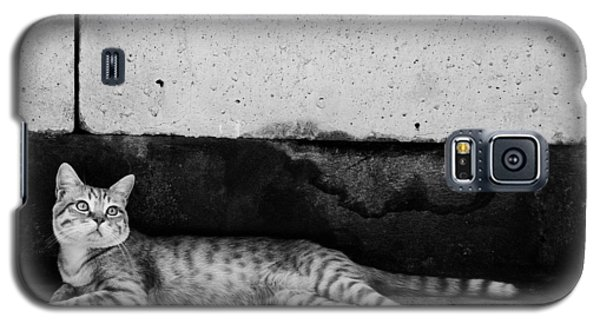 Galaxy S5 Case featuring the photograph Untitled by Laura Melis