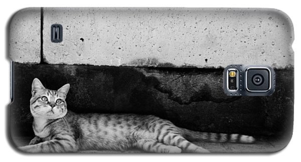 Untitled Galaxy S5 Case by Laura Melis