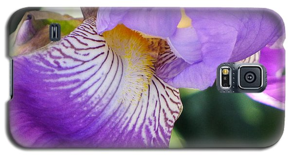 Galaxy S5 Case featuring the photograph Violet by Nora Boghossian