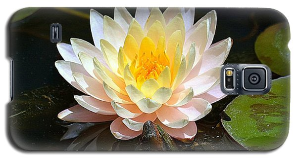 Galaxy S5 Case featuring the photograph Water Lily by Lisa L Silva