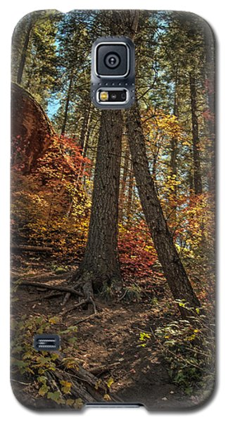 West Fork Fall Color Galaxy S5 Case