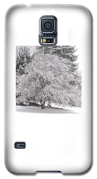 White As Snow Galaxy S5 Case