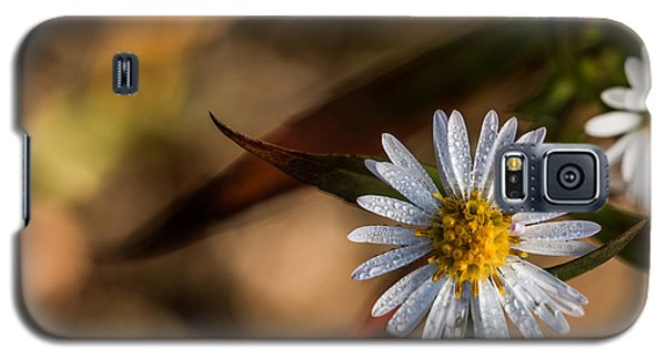 Galaxy S5 Case featuring the photograph White Flower Dew-drops Autumn by Jivko Nakev