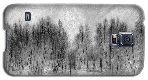 Boney Piles Galaxy S5 Case