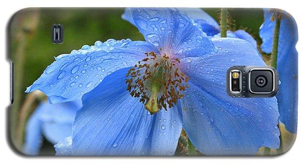 Wild Blue Poppy Galaxy S5 Case