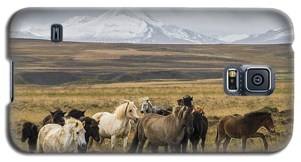 Wild Icelandic Horses Galaxy S5 Case by For Ninety One Days