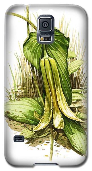 Wild Oats Galaxy S5 Case by Bob  George