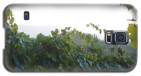 Wine Yards In Loppiano Galaxy S5 Case