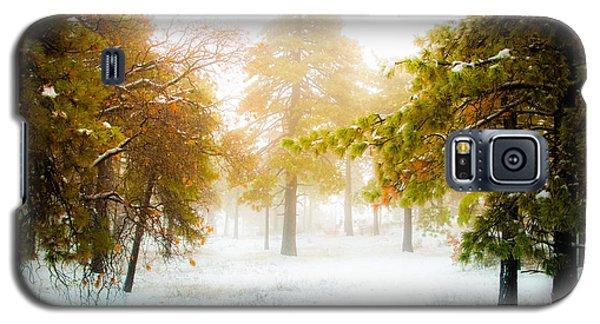 Winter In Mt Laguna Galaxy S5 Case by Mickey Clausen