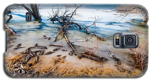 Winter Shore At Barr Lake Galaxy S5 Case by Tom Potter