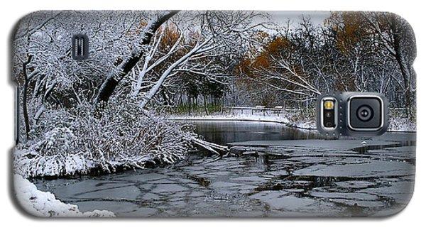 Winter Wonderland Galaxy S5 Case by Larry Trupp