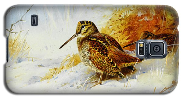 Winter Woodcock  Galaxy S5 Case by Celestial Images