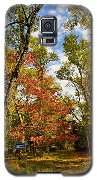 Galaxy S5 Case featuring the photograph Woodland Path In Autumn by A Gurmankin