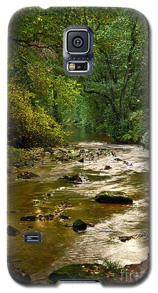 Woodland Stream In Autumn Galaxy S5 Case