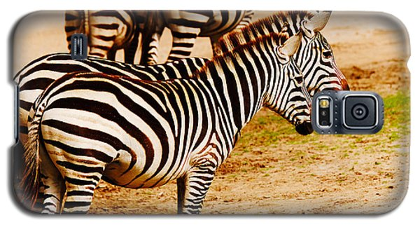 Galaxy S5 Case featuring the photograph Zebras Close Together by Nick  Biemans