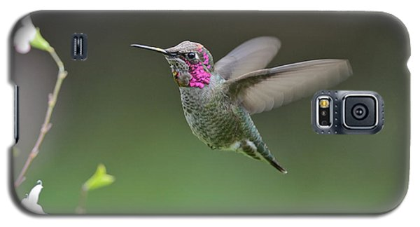 Galaxy S5 Case featuring the photograph Anna's Hummingbird by Kathy King