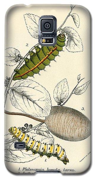 Butterflies Galaxy S5 Case by English School