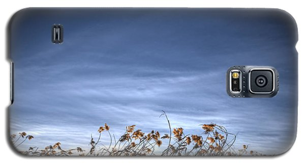 10 Foot High Grass Galaxy S5 Case