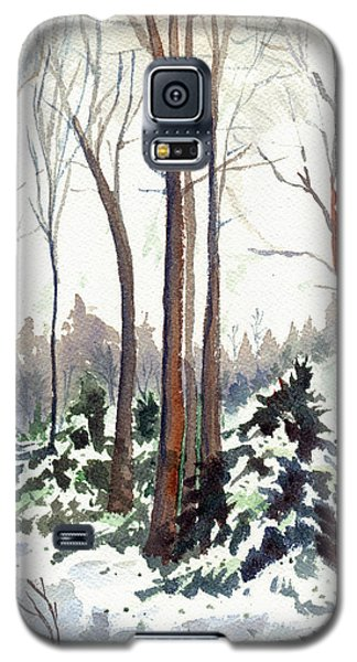 12 Below Galaxy S5 Case