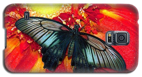 Butterfly Galaxy S5 Case by Tam Ryan