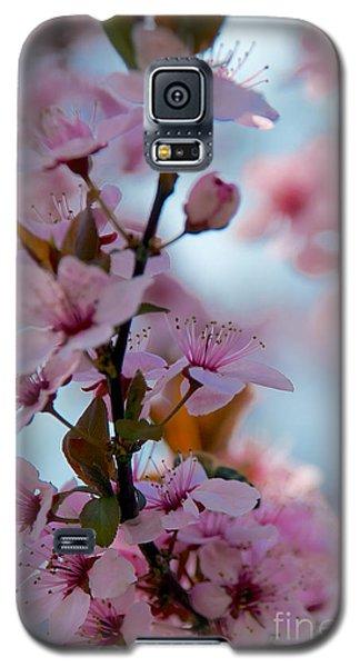 Plum Tree Flowers Galaxy S5 Case