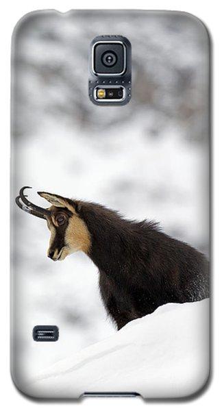 130201p229 Galaxy S5 Case