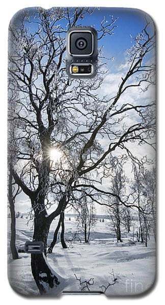 Galaxy S5 Case featuring the photograph 130201p341 by Arterra Picture Library