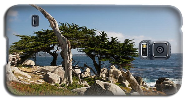 Galaxy S5 Case featuring the photograph 17 Mile Drive  by Vinnie Oakes